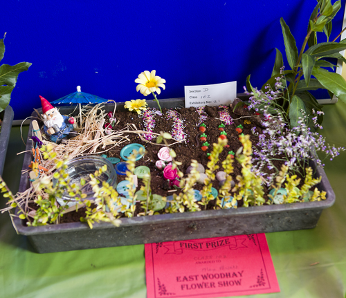 180818-flower-produce-show_0034