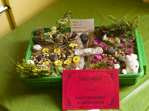 180818-flower-produce-show_0036