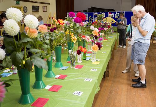 180818-flower-produce-show_0052